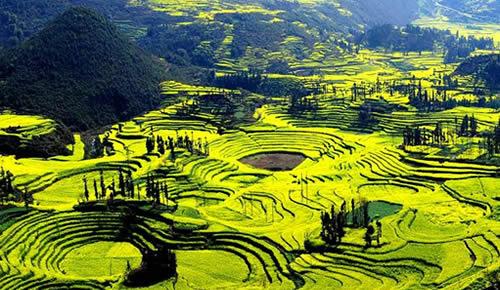 罗平风景区图片